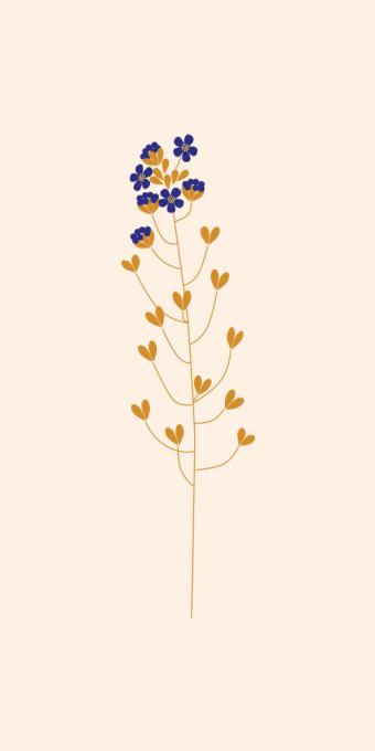 Les Herbes de Paris